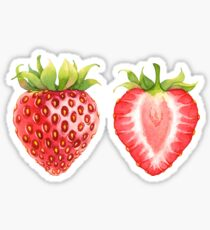 Watercolor strawberry Sticker
