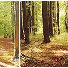 Early Autumn Glory (Diptych) by Sybille Sterk