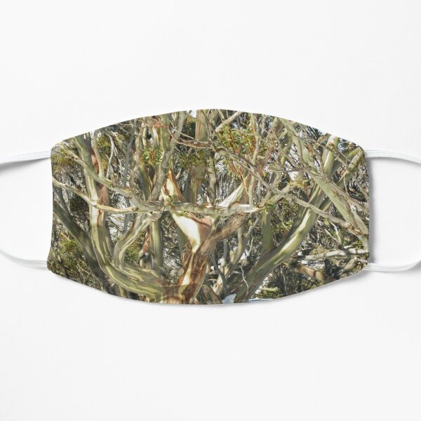 Colours of an entwined Snow Gum Flat Mask
