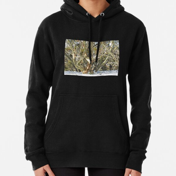 Colours of an entwined Snow Gum Pullover Hoodie