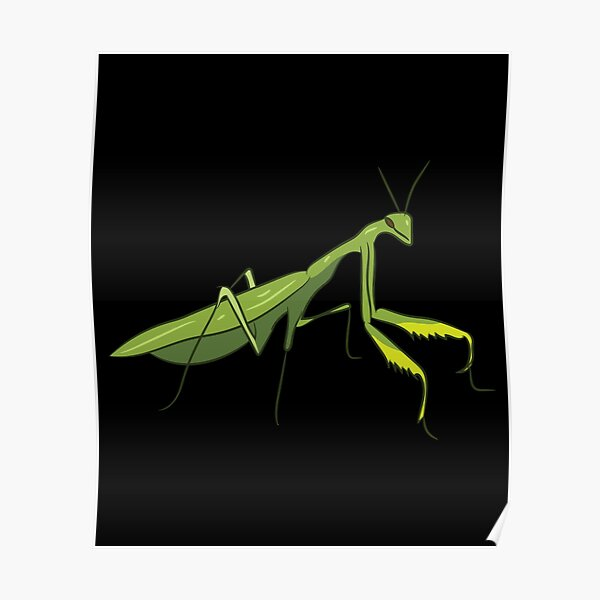 Cute Praying Mantis Love Funny Praying Mantis Poster