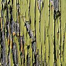 Peeling Green Paint on Weathered Wood by pjwuebker