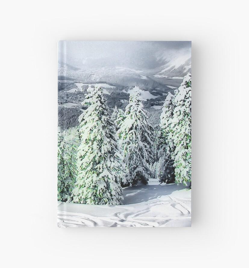 A Winters Dream by Jo Nijenhuis