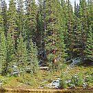 Lake Irene in Autumn Study 13-1  by Robert Meyers-Lussier