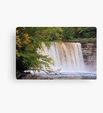 Tahquamenon Falls from the River Canvas Print