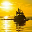 Pilot Boat by Wendy Mogul