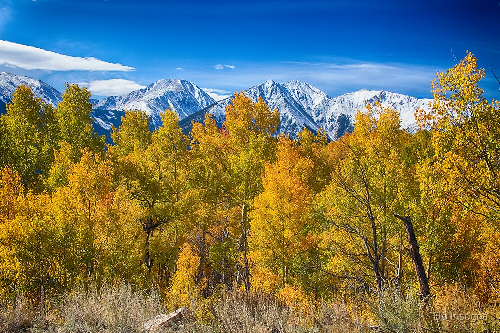 Independence Pass Autumn View by Bo Insogna