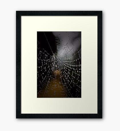 The Web Framed Print