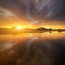 Bright Passage by Bob Larson