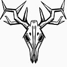 deer scull by soulexperience