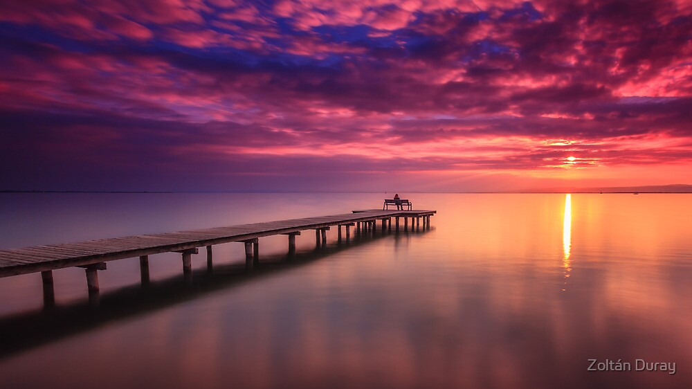 Sunset Lake Neusiedl by Zoltán Duray