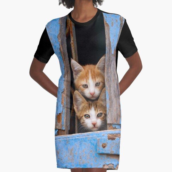 Cute Cat Kittens in a Blue Vintage Window Graphic T-Shirt Dress