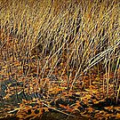 Gold Rushes and Oak Leaves Flow by paintingsheep