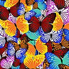 Butterflies by Mark McClare Designs