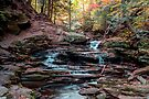 Warm Autumn Glow Illuminates Seneca Falls by Gene Walls