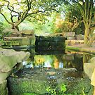 Hidden treasure under Cabot tower Bristol   by Arvind Singh