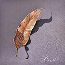 Dry leaf by Elena Kolotusha