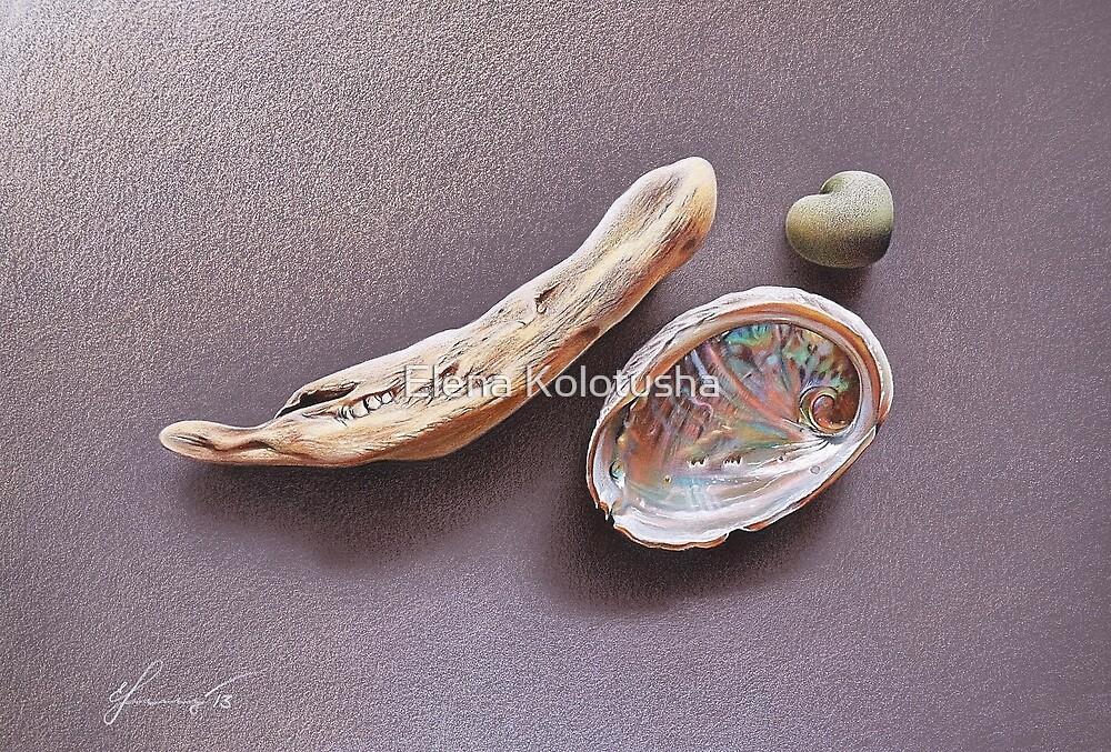 Still life with abalone shell by Elena Kolotusha