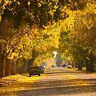 Saskatchewan Avenue by Roxanne Persson