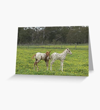 Are you sure we have the same dad? Greeting Card