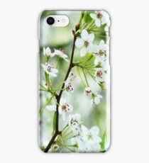Pear Blossoms iPhone Case/Skin