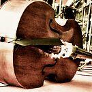 Bass Left by Riggzy