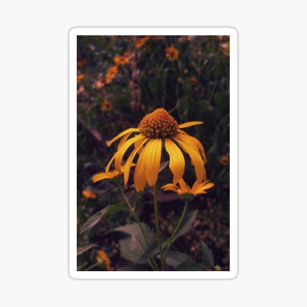 Single yellow False Sunflower Sticker