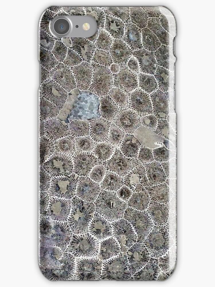 Petoskey Stone, Pure Michigan! by James Lady