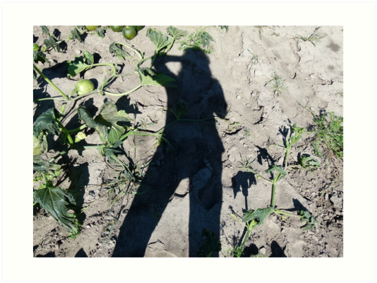 Shadow Over The Pumpkin Patch by MaeBelle