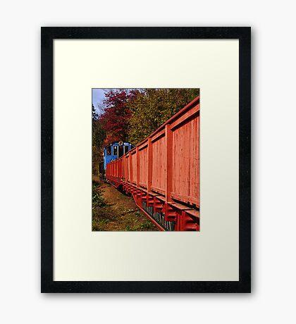 Autumn Stowaway  Framed Print
