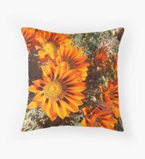 Vlamme in Namaqualand Throw Pillow