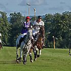 Polo match at Cowdray Park by Judi Lion