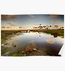 Flood plains of Stanley Poster