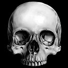 Half Skull by Jessica Bone
