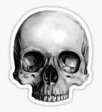 Half Skull Sticker