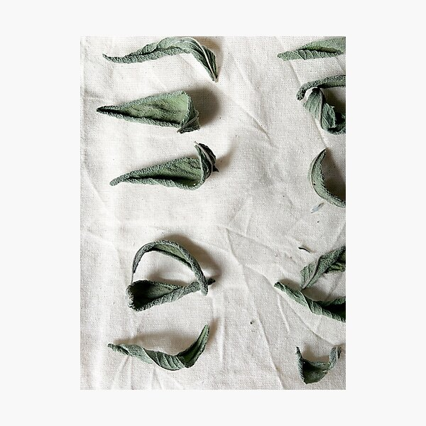 Dried Sage on Linen Photographic Print