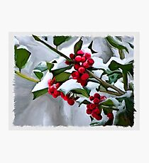 Holly Berry Digital Painting Photographic Print