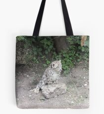 One day I'll be bigger than this rock... Tote Bag