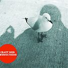 """Crazy Bird Production"", copywrite law Australia by Robert Phillips"