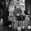 Halloween by smithandcompany