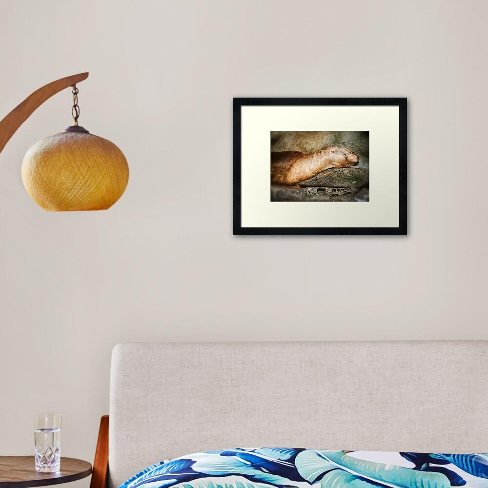 Nap Time on the Belle Chain Framed Art Print