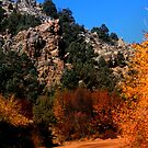 Cherry Creek Canyon by Arla M. Ruggles