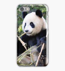 Chop Sticks - Funi   - Adelaide Zoo's Female Panda iPhone Case/Skin