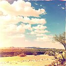 Hipsta Sky by Judi FitzPatrick