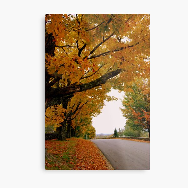 Fall In Love With New England Metal Print