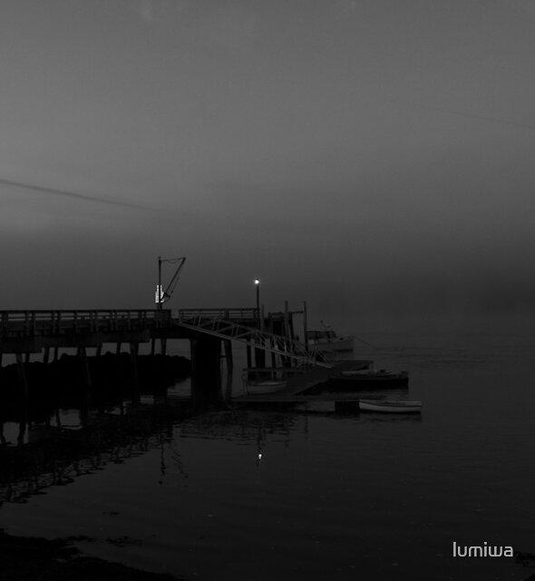 Reflection by lumiwa