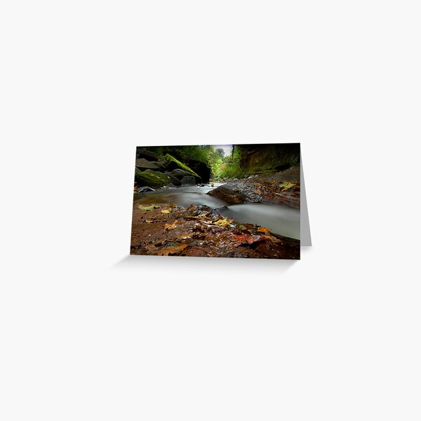 """""""Autumn leaves are falling"""" Greeting Card"""