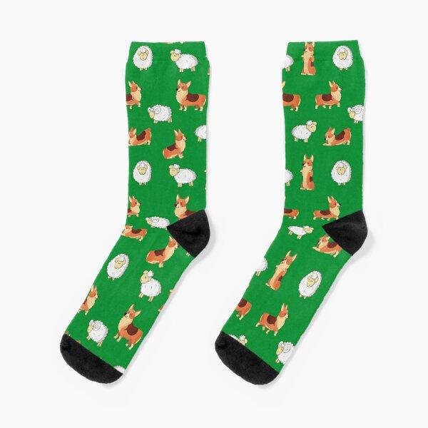 Corgis on the farm  Socks