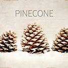 Pinecone by Terri  Ellis