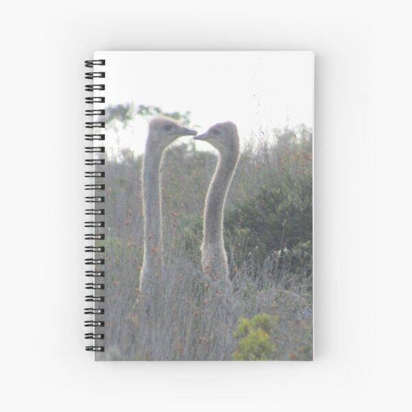 Loving Ostriches Spiral Notebook